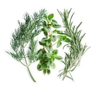 Italian Herbs of Naples
