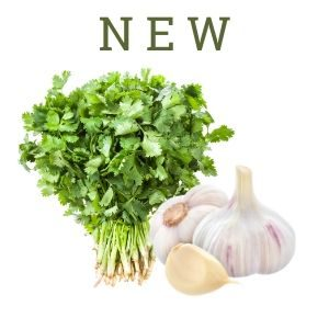 Cilantro Garlic - New